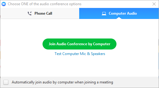 conference audio options