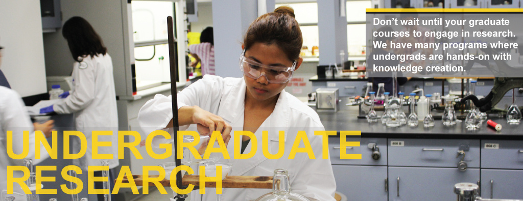 Undergraduate research, we have many programs where undergrads are hands-on with knowledge creation